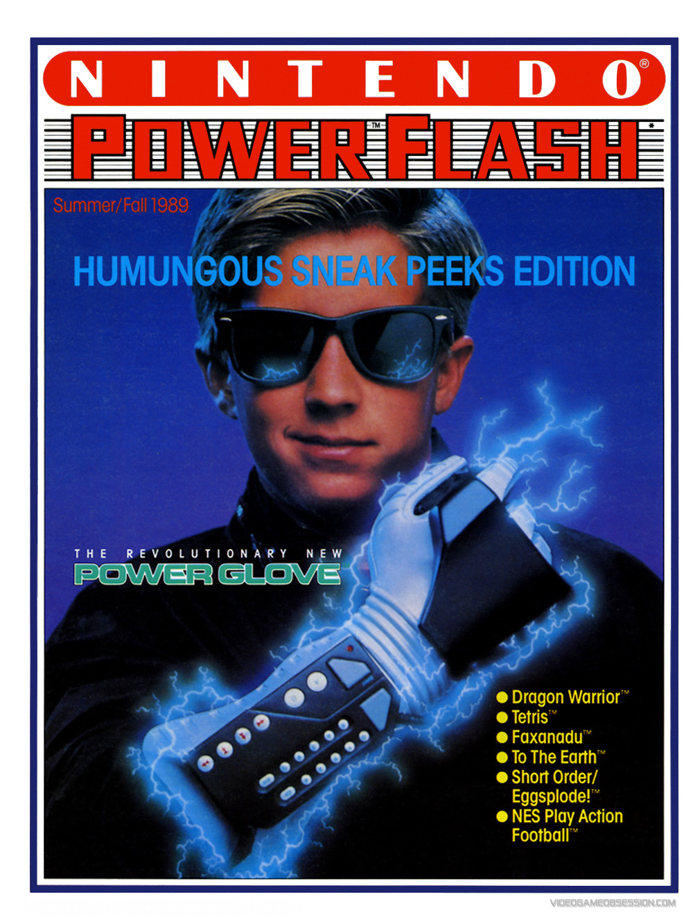 NintendoPowerFlash-05-Fall1989-vgo.jpg